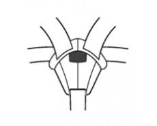LORELLI ARTHUR +SPS ISOFIX (0-25 кг)