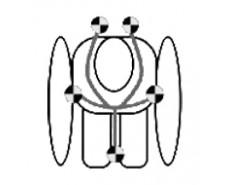 LORELLI CORSCA ISOFIX (0-36 кг)