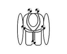 LORELLI MERCURY (0-36 кг)